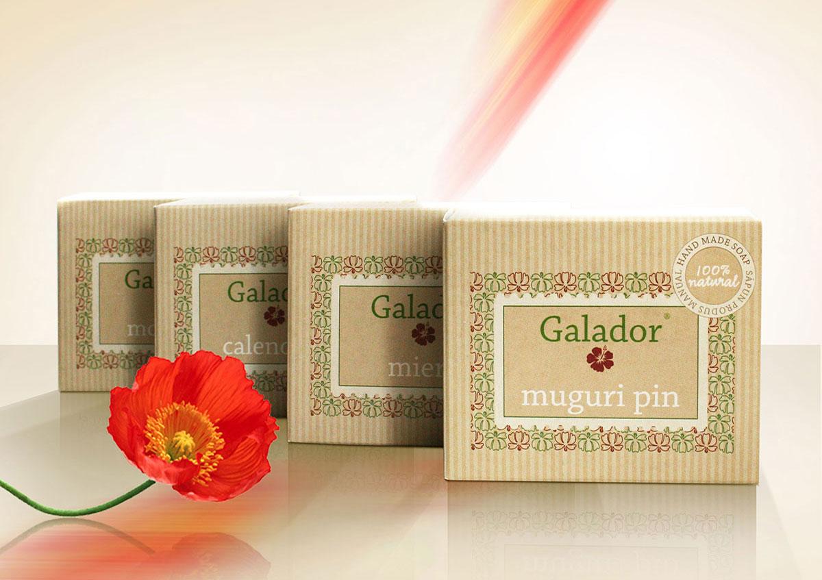 galador portofoliu packaging produs