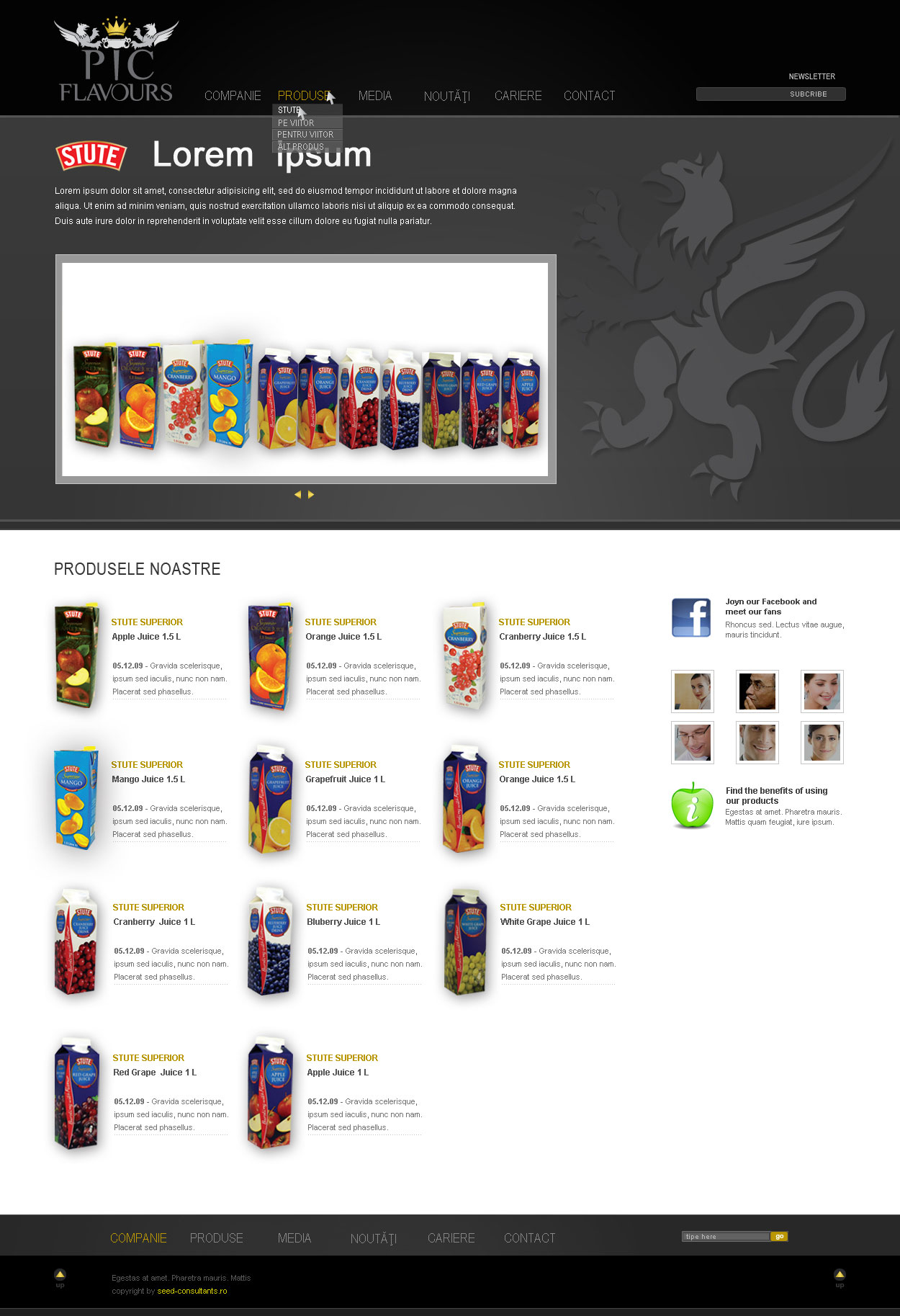 pic flavours branding online