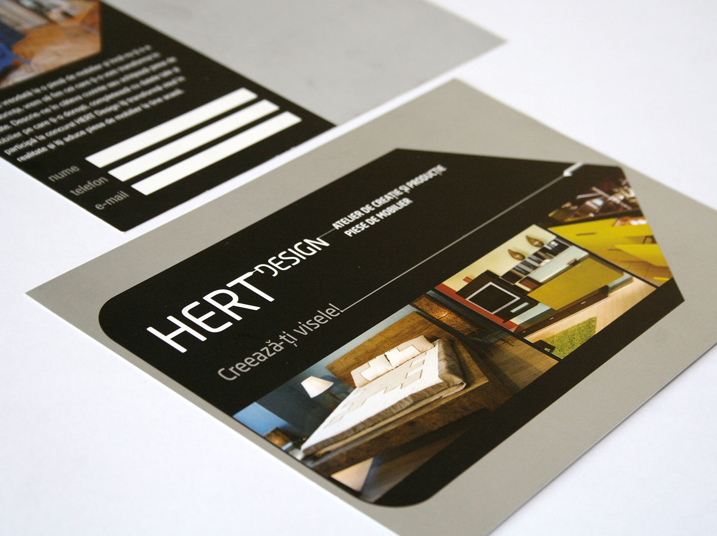 hert portofoliu branding revista