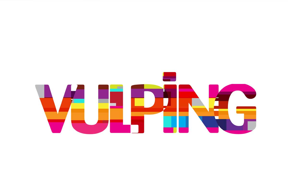 logo design vulping