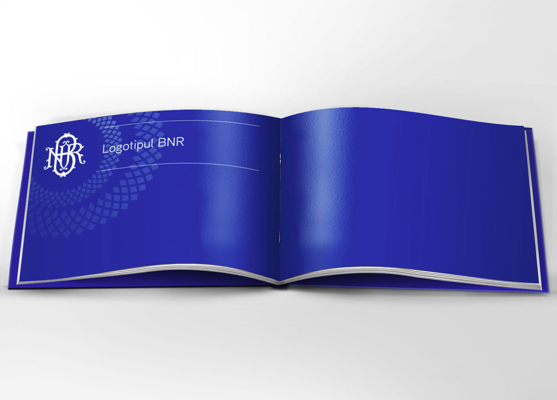 manual brand studiu de caz bnr