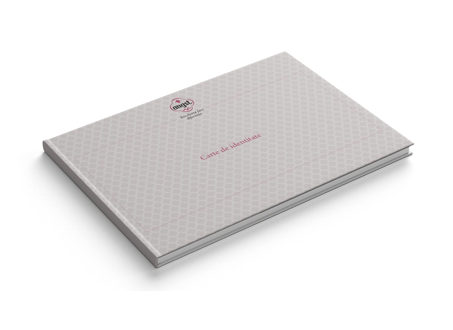 Angst portofoliu inoveo Brand Book