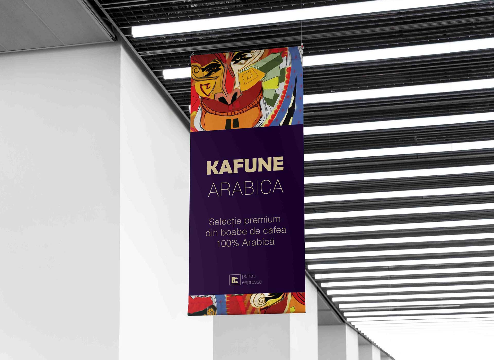kafune portfolio inoveo roll-up