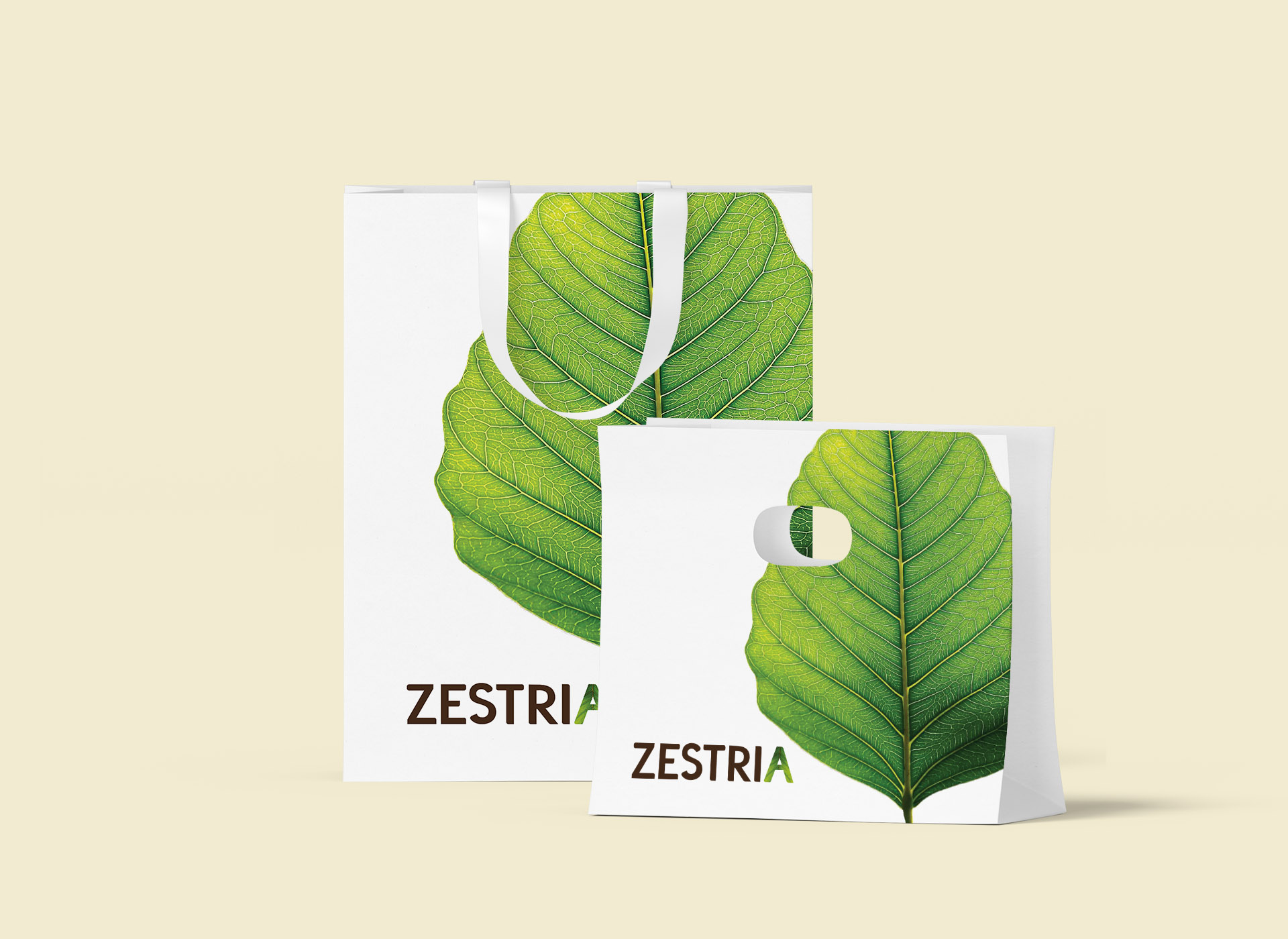 zestria portfolio inoveo bag