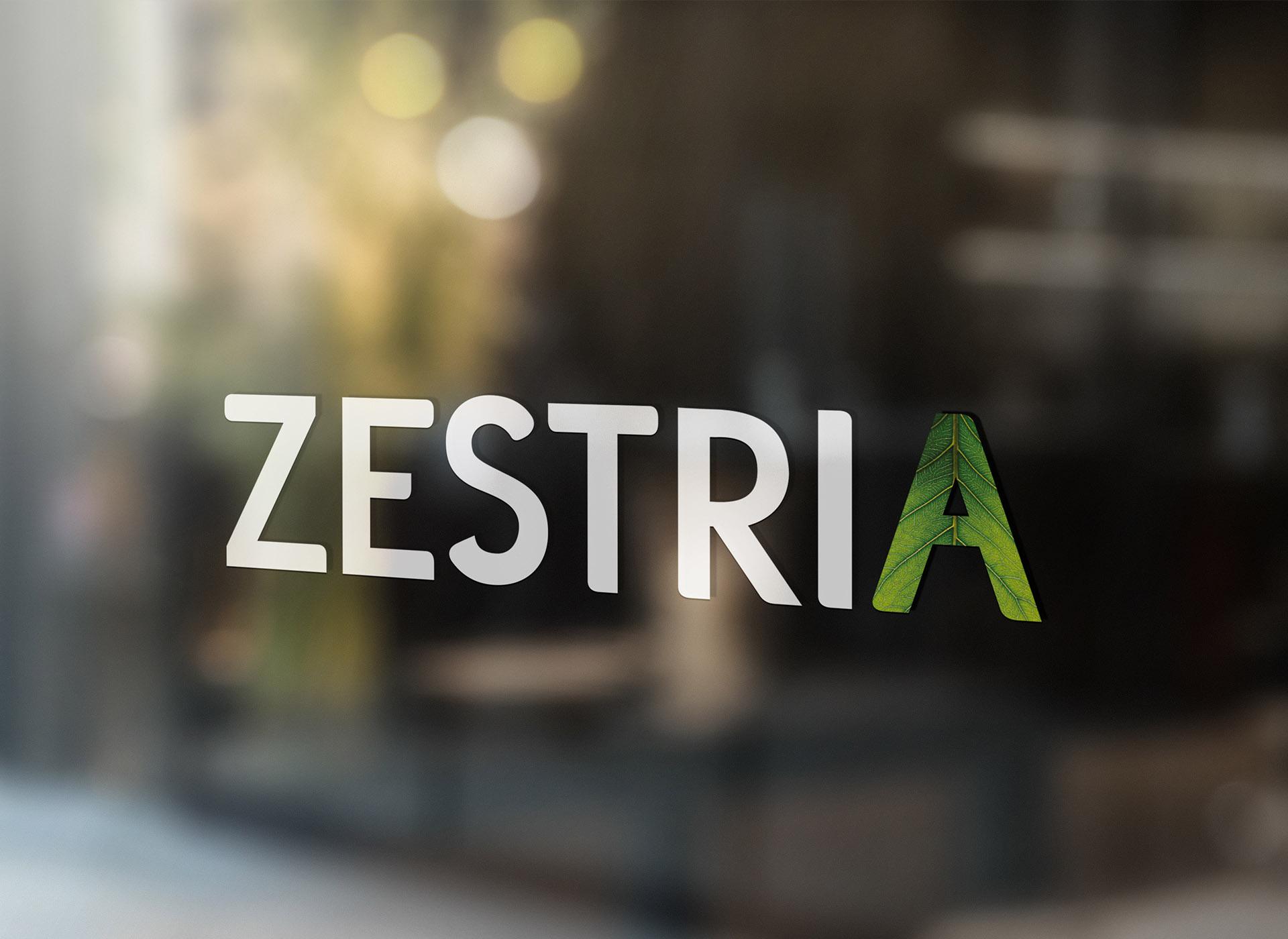 zestria portfolio inoveo window