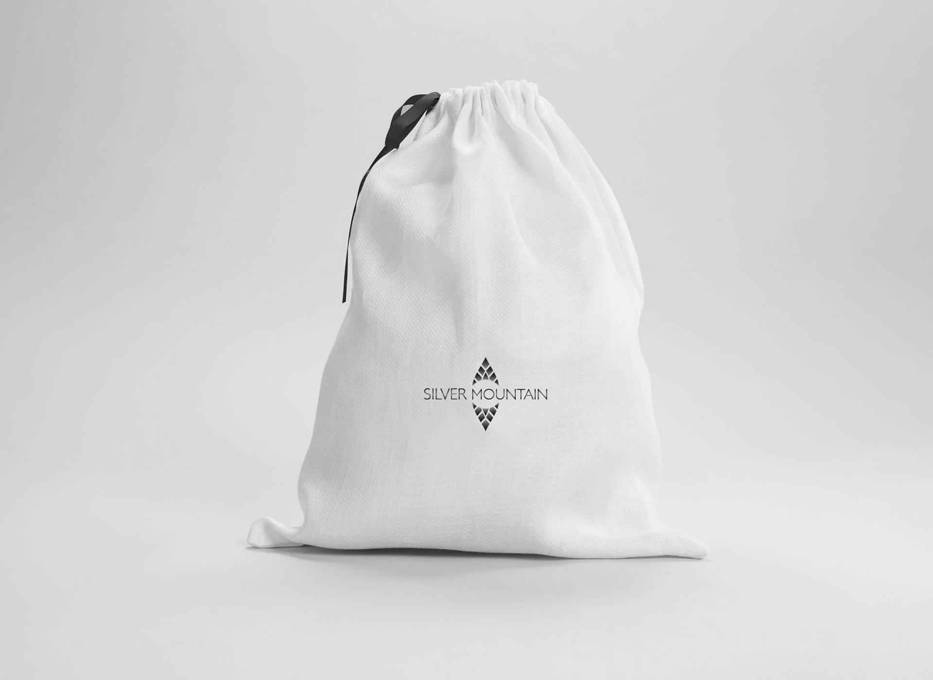 Silver Mountain portfolio inoveo bag