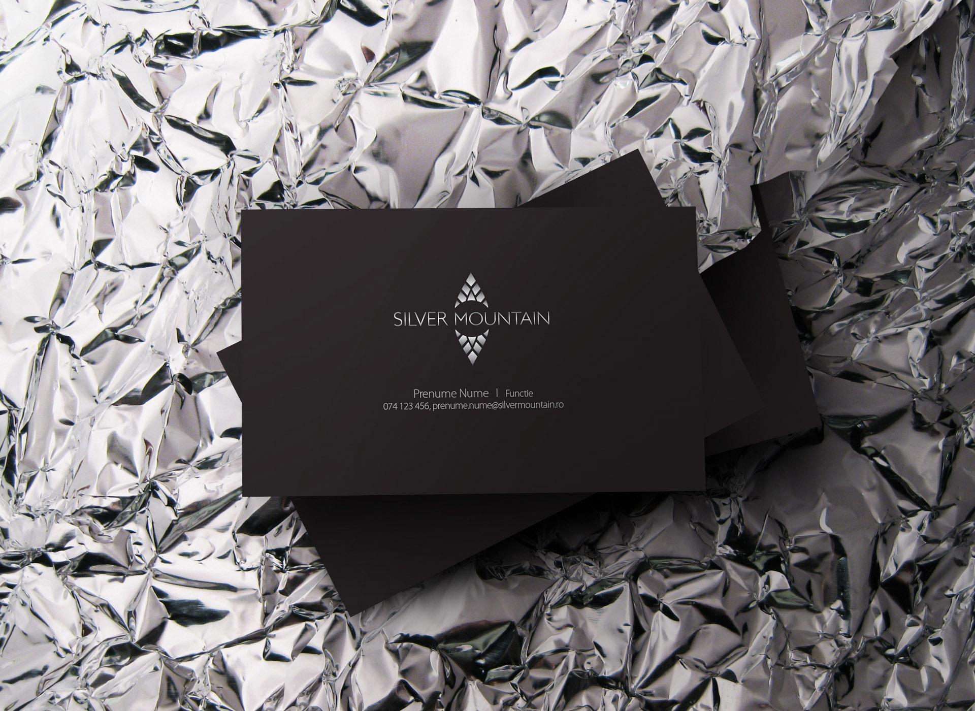 Silver Mountain portfolio inoveo business card